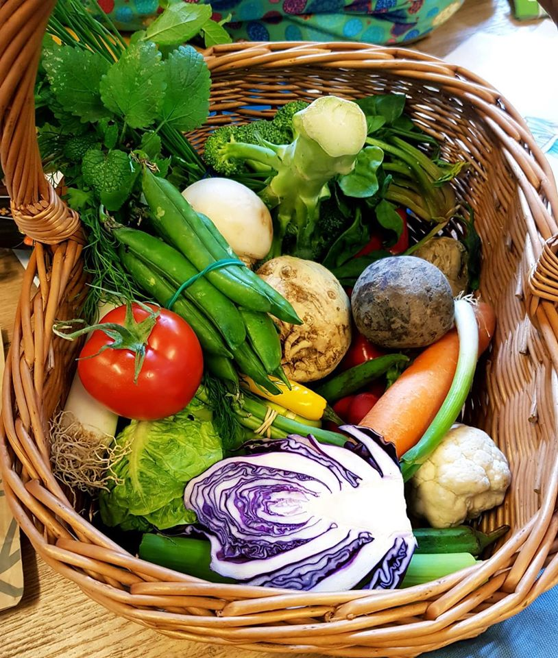 Zeleninový koš